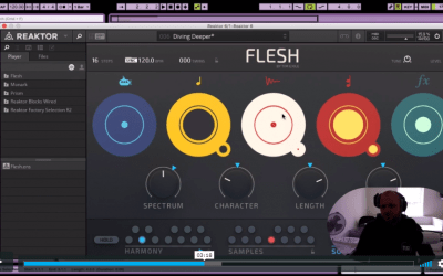 Sound Design: NI Flesh