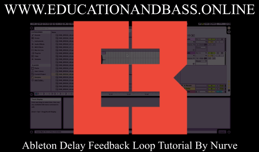 Delay Feedback Loop: Ableton
